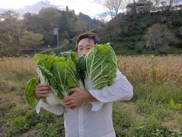おやき野菜収穫2