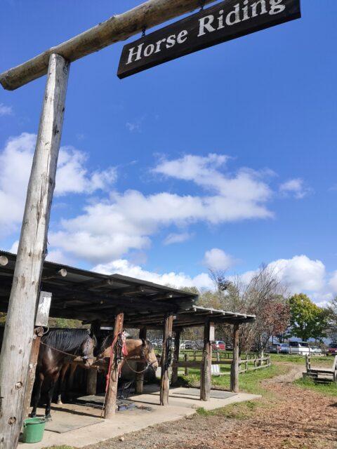 滝沢牧場乗馬